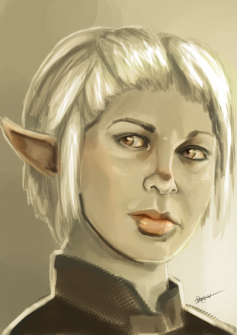 rebel_elf_wife_by_dragriyu-d9oa4sh